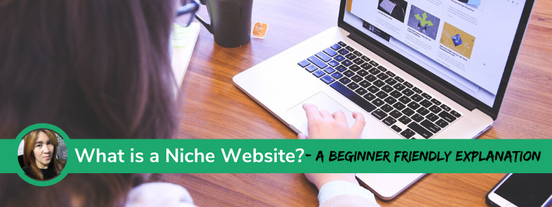 What is a Niche Website a beginner friendly explanation