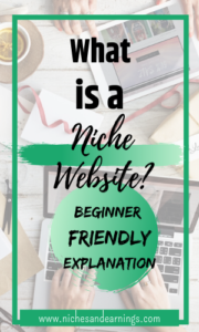 What is a Niche Website? Beginner Friendly Explanation